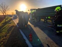 Verkehrsunfall mit einer eingeklemmten Person